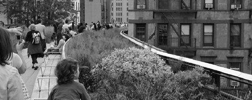 New York groener door privaat initiatief - Afbeelding 2