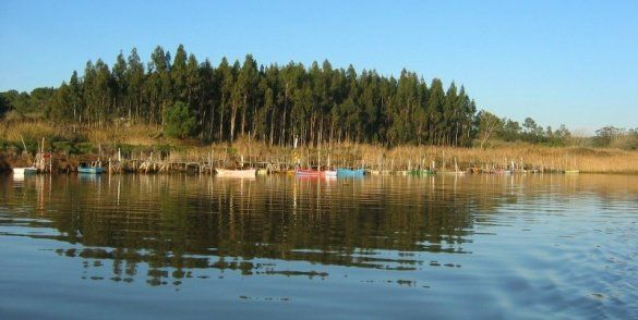 Managing multiple problems affecting lagoons in Europe - Afbeelding 4