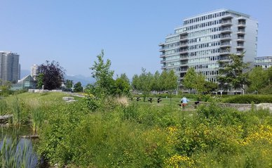 Ingrid Rompa_Natuurgebied in Olympic Village