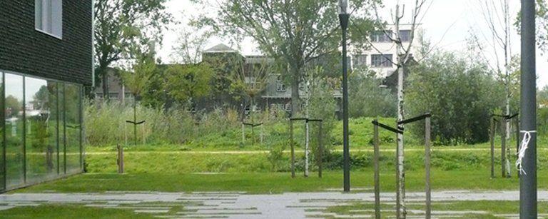 Blauwer en groener: kansen scheppen voor integrale gebiedsontwikkeling in Delft - Afbeelding 3