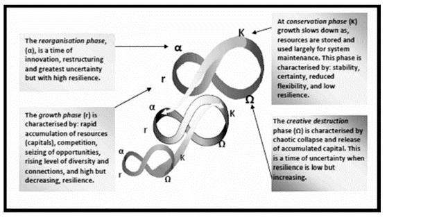 De panarchie; een genest systeem van cycli op verschillende schaalniveaus