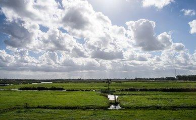 Alkmaar natuurgebied (Flickr)