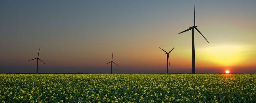 Master Class Ontwerpkracht en Energietransitie helpt gemeenten energiebeleid te verduurzamen