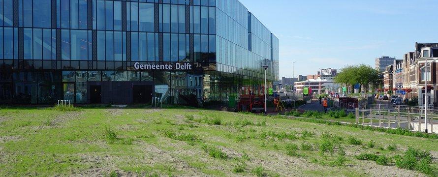 """Delft, Spoorzone (20170718)"" (CC BY-NC 2.0) by Wattman (trams, treinen, etc)"