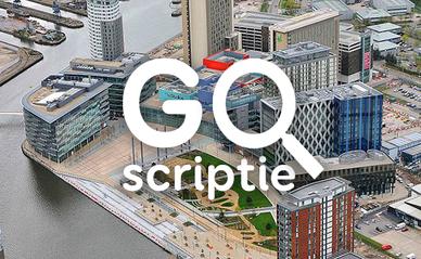 go scriptie incentives