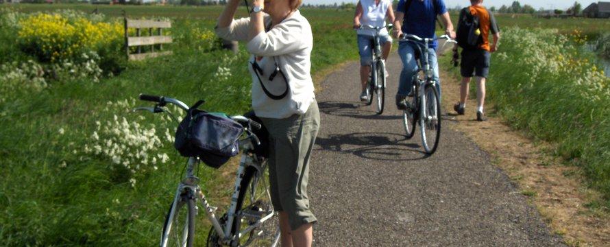 groen recreatie natuur fietsen