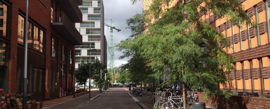 amsterdam zuid straat