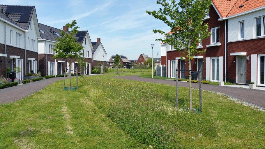 Nieuwbouw Boszoom gemeente Pijnacker-Nootdorp