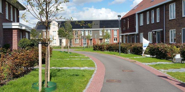 Rijswijk Buiten 270818