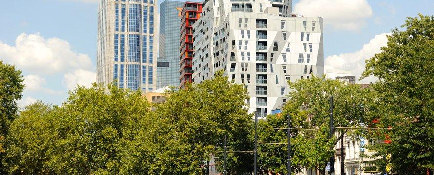 Rotterdam (CC BY-NC 2.0) by marcoderksen