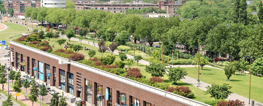Dakpark Rotterdam