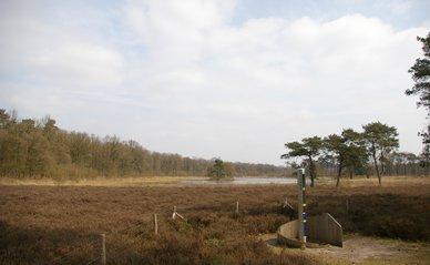 utrechtse heuvelrug | Wikimedia Commons