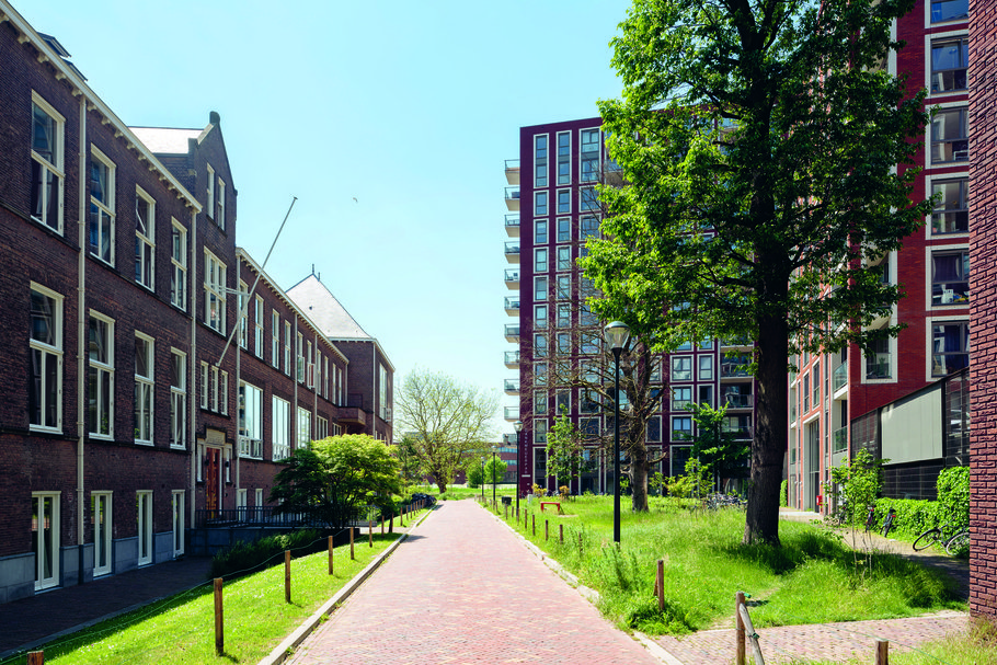 Leiden Dankmeijerpad