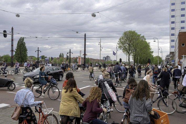 Amstel -> beelden Van der Madeweg en Mr. Treublaan