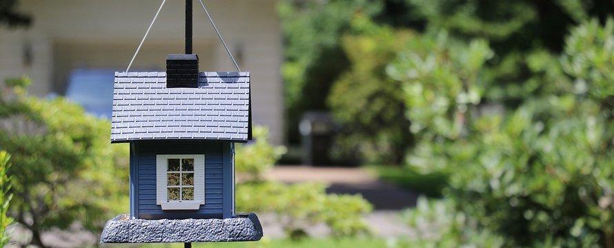 tiny house bird