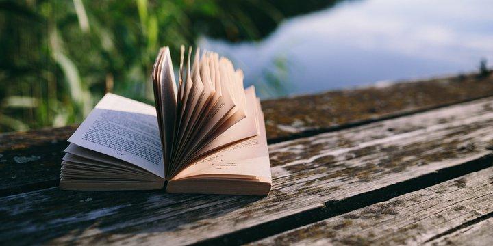 boek lezen vakantie | pxfuel