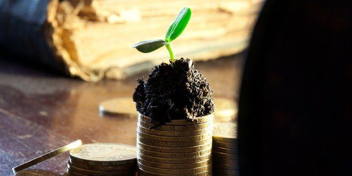 innovatie groei