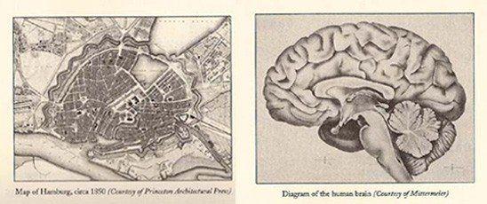 De stad als brein - Afbeelding 1