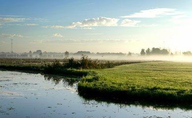 Dordrecht weiland