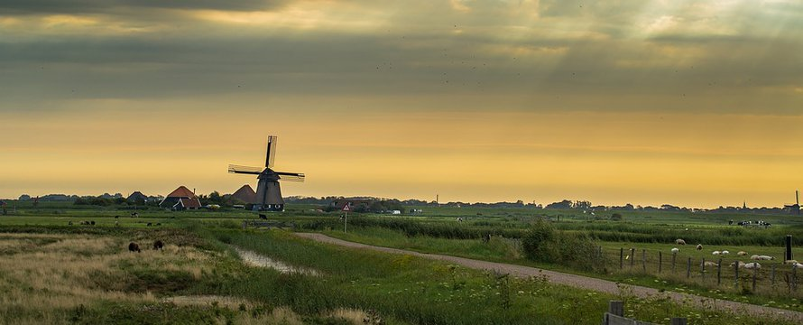 Nederland polder