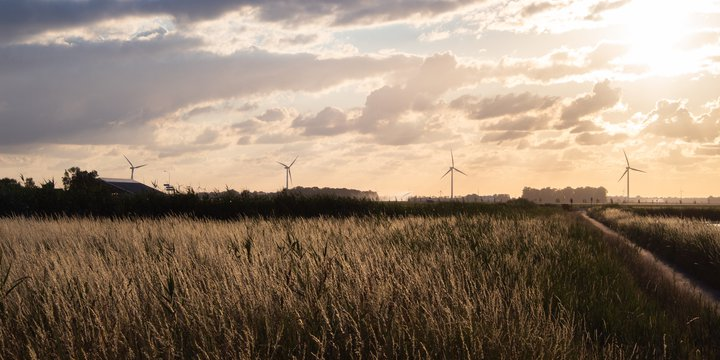 Landschap windmolens