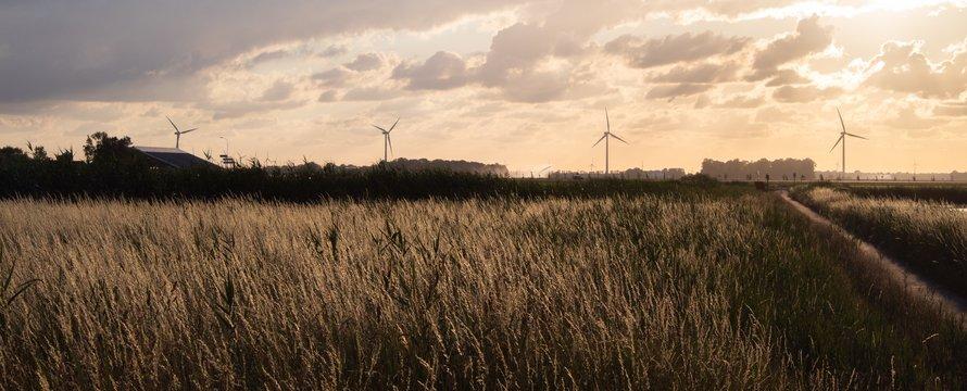 Landschap windmolens