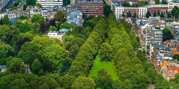 Groen park in de stad - Pixabay, 2020