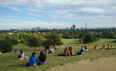 groen stad mensen park