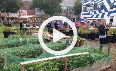 Stadsmaken duurzaamheid
