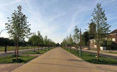 De Groene Loper in Maastricht