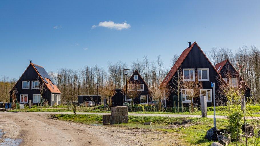 Milieuvriendelijke houten huizen in Almere Oosterwold