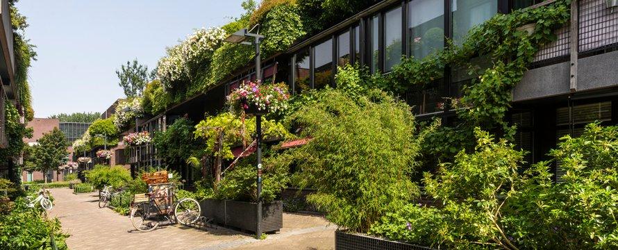 Groene straat in het centrum van Eindhoven