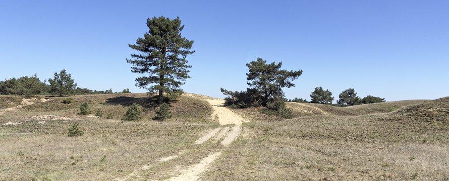"""veluwe klimaatadaptie """"Nationaal Park de Hoge Veluwe"""" (CC BY-SA 2.0) by Eric de Redelijkheid"""